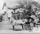 Martha (Newell) Lacey in her carriage outside of her home in Oskaloosa; Mahaska County; Iowa